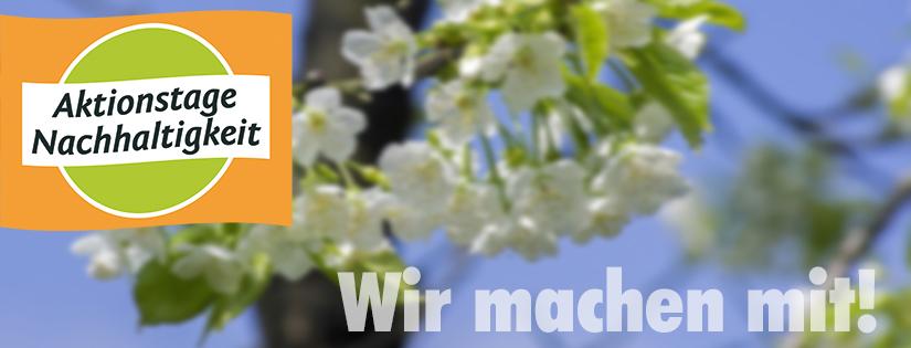 Aktionstage-Banner_Kirschblüte_825px